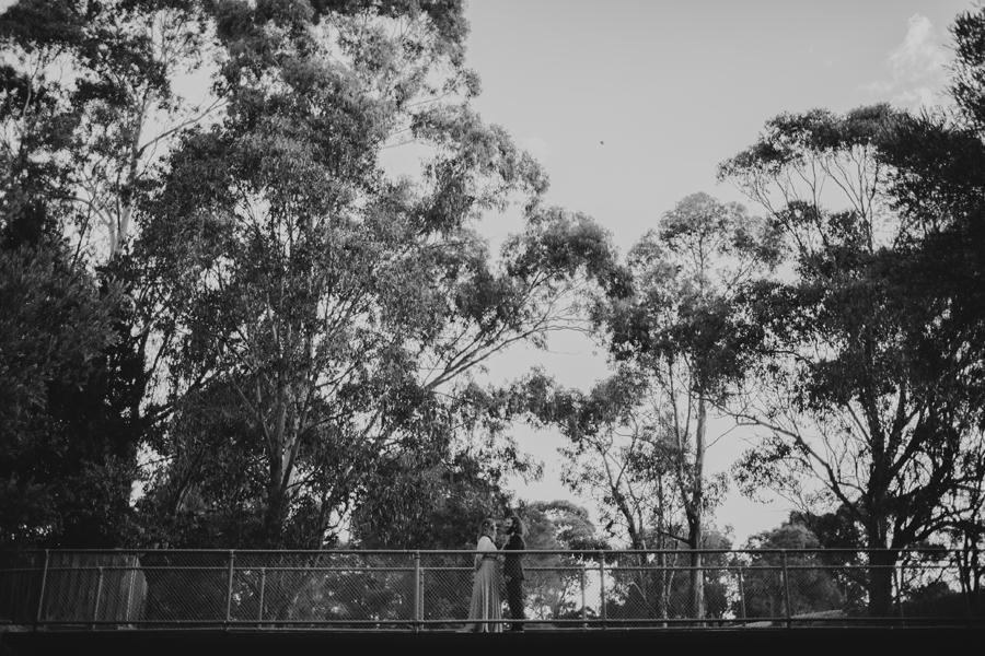 058-storyboard